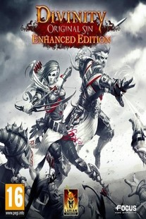 Обложка Divinity: Original Sin (Enhanced Edition)